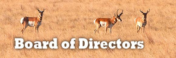 IHFH_board-of-directors